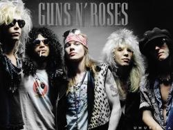 枪炮玫瑰图片