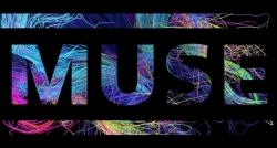 Muse乐队壁纸