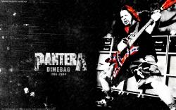 Pantera高清图片