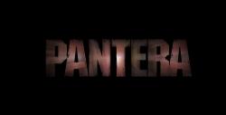 潘多拉乐队海报图片