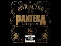 Pantera乐队图片