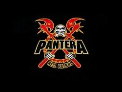 Pantera高清壁纸