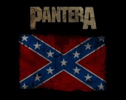 Pantera海报图片