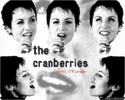 The Cranberries 小红莓高清大图