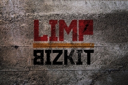 Limp Bizkit桌面背景