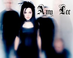Evanescence 美女主唱壁纸