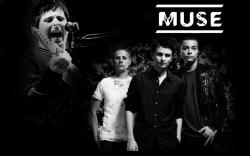 MUSE 乐队成员桌面壁纸
