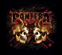 Pantera乐队黑色摇滚壁纸